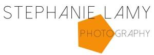 logo_20150204_v2orange
